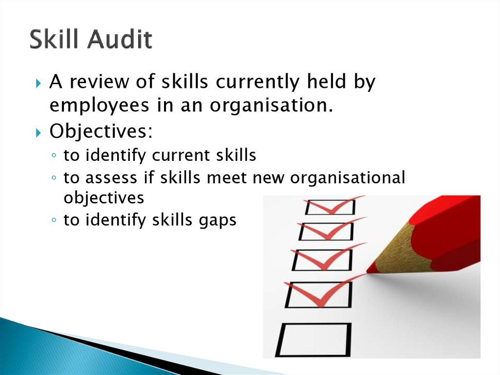human resource management in business  skill audit
