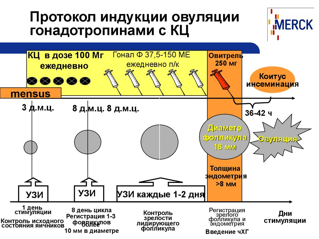 Протокол индукции овуляции КОС - КЦ - online presentation