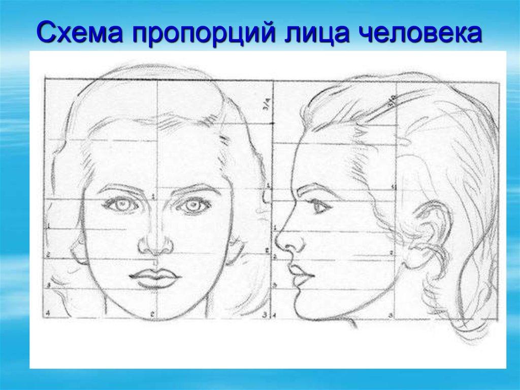 Рисунки головы портрет
