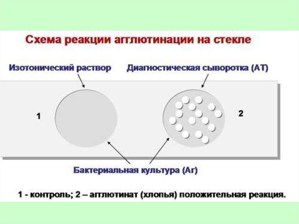 диагностика поствакцинальной аллергии