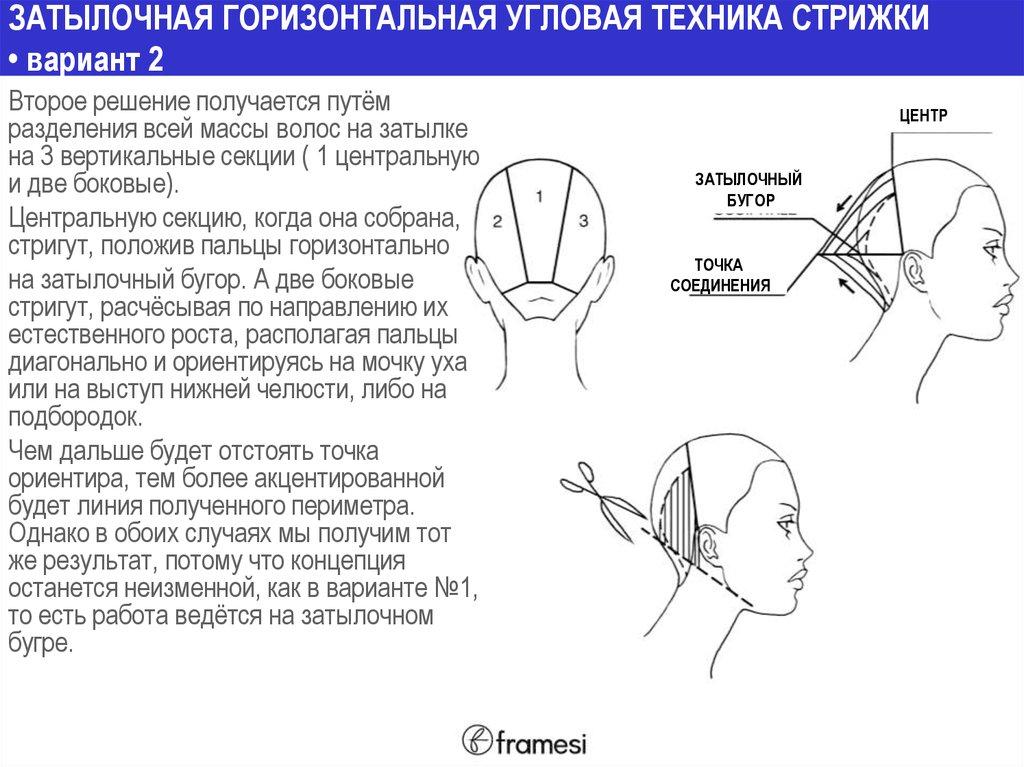 Затылочные диагонали при стрижке