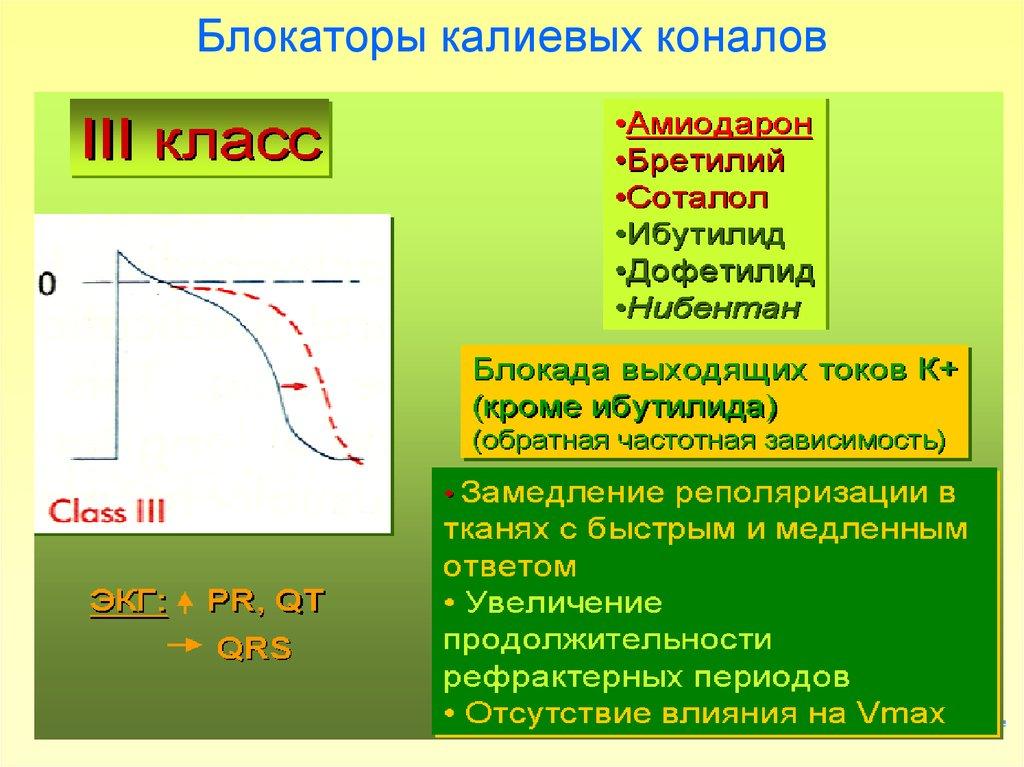 препараты блокаторы кальциевых каналов список