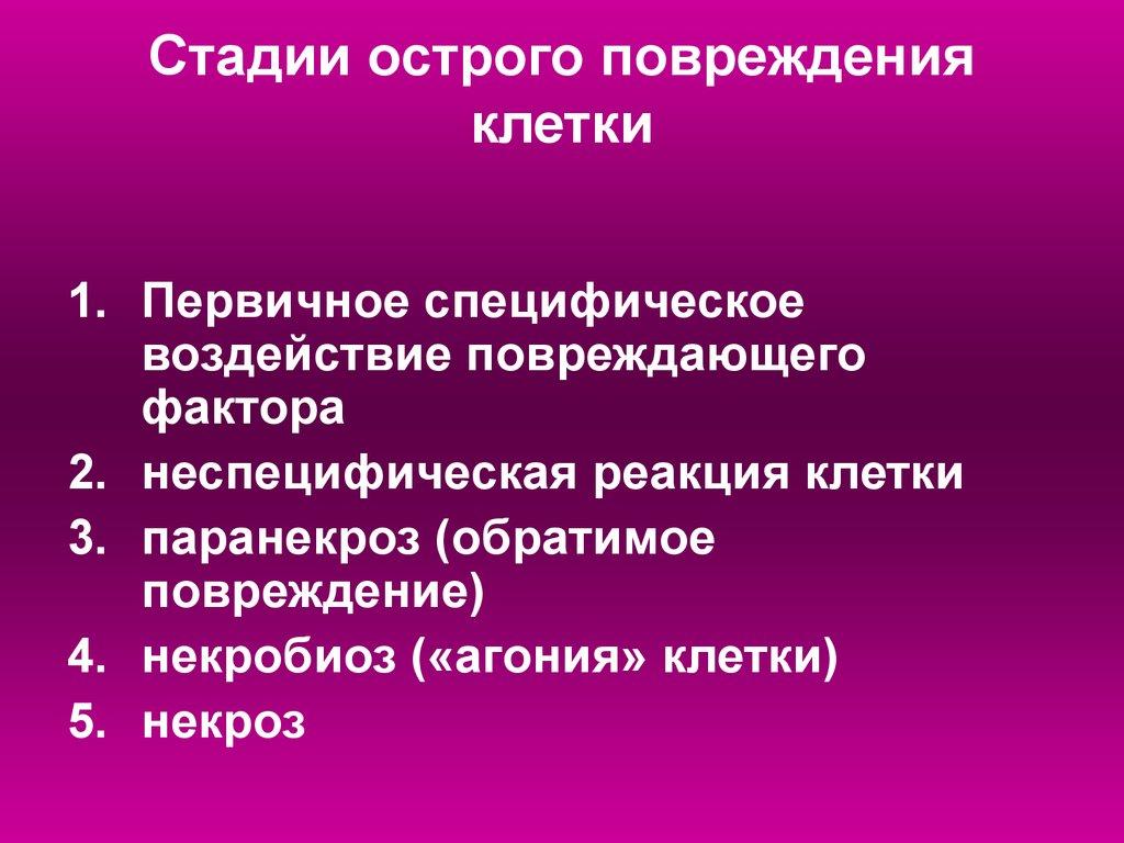 Р Реферат Пневмония клиника диагностика лечение