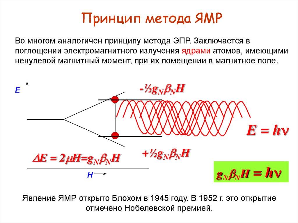 Резонанс Ядерный Магнитный