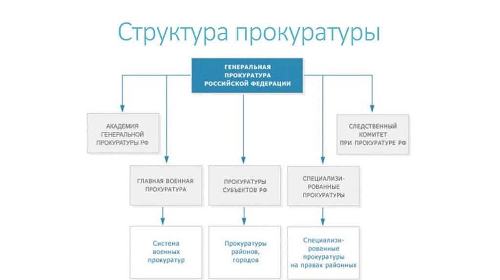 функции прокуратуры курсовая работа