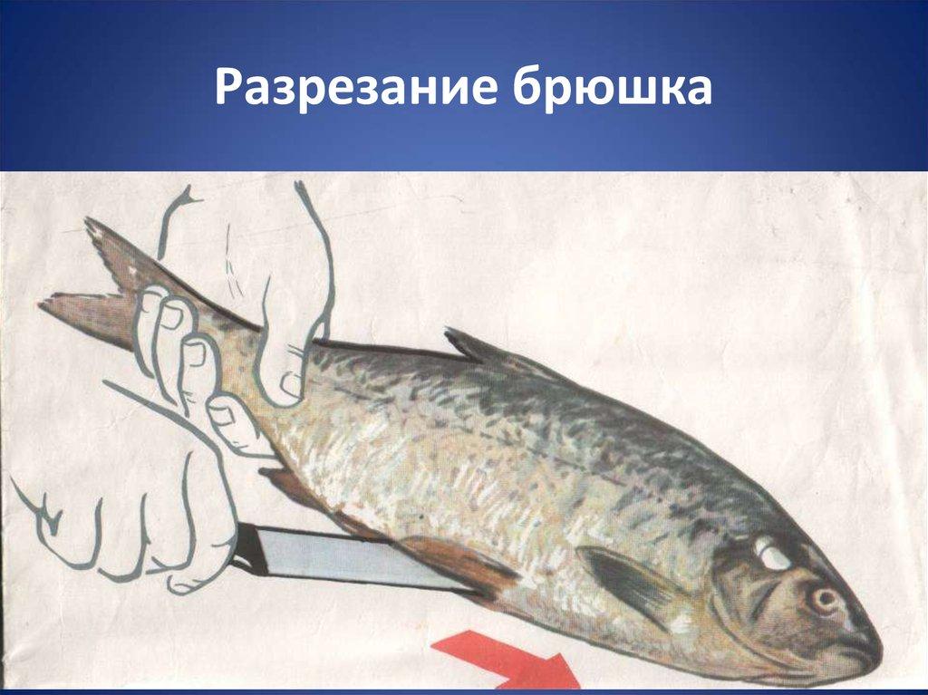 Приготовление блюд за 100 рублей