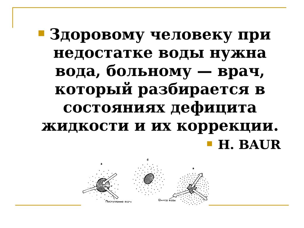 ebook Contemporary Belarus: Between Democracy