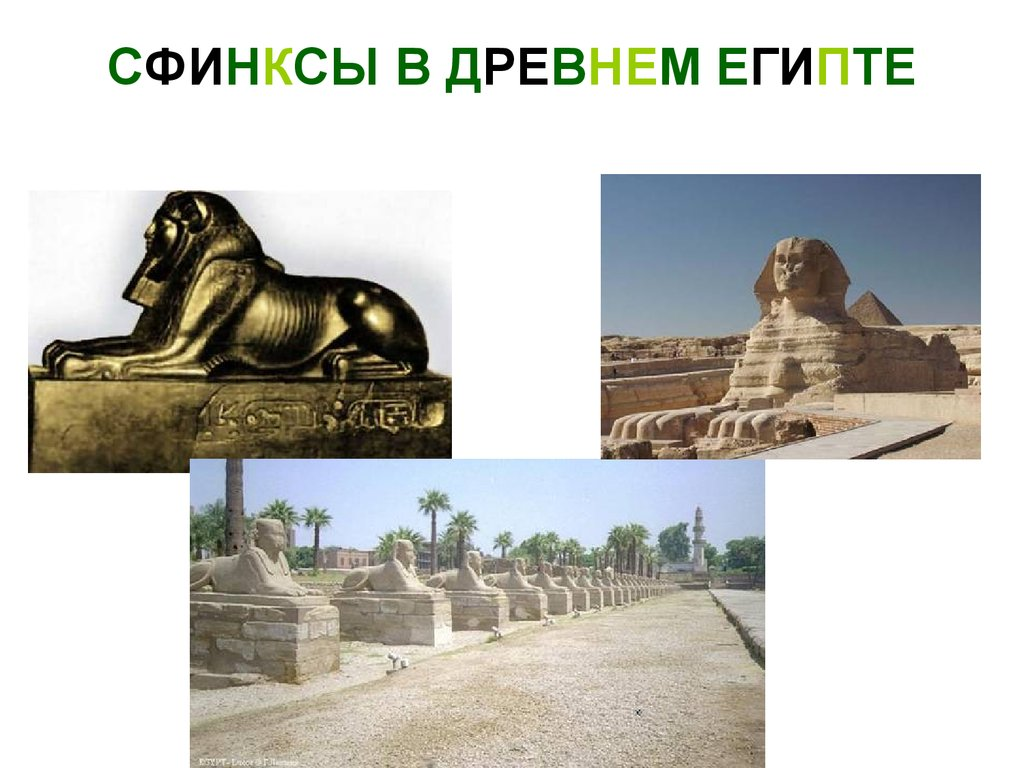 знакомство с древним римом 2