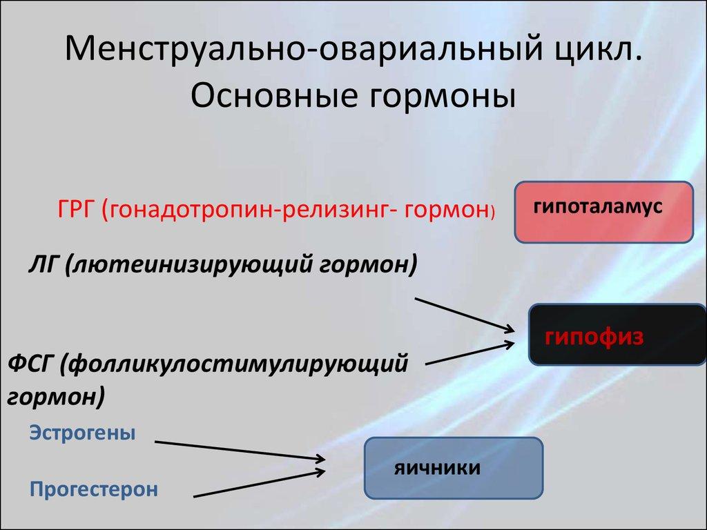 какие либерины и статины синтезируются в гипоталамусе