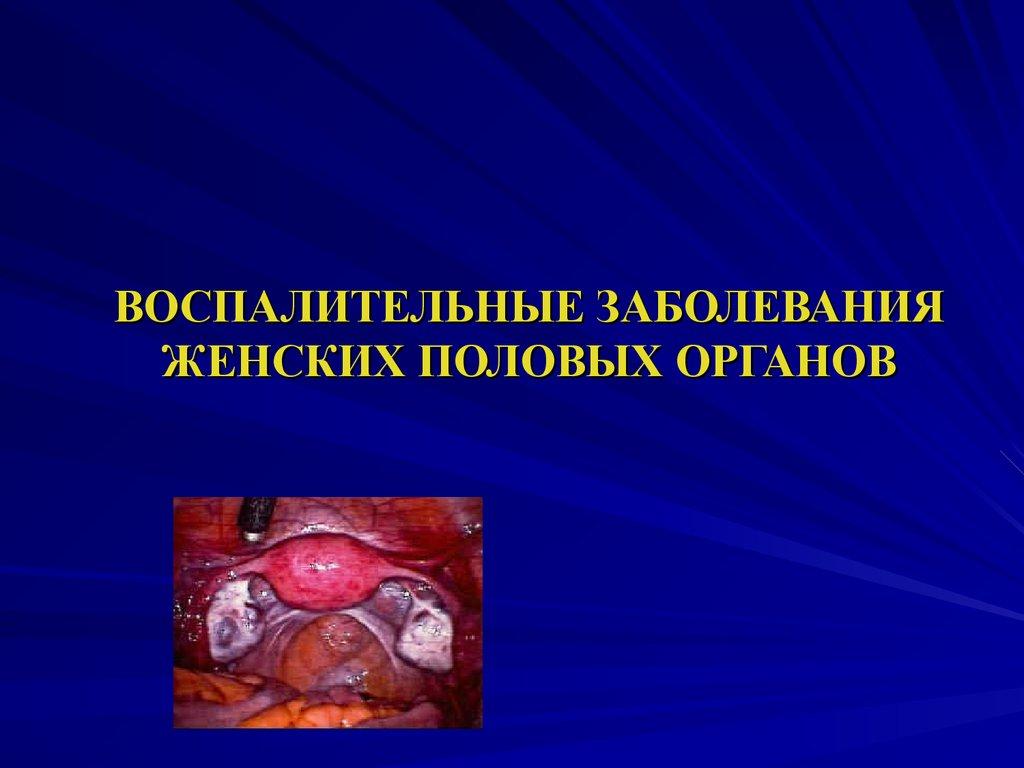 фото женские половые органы онлайн