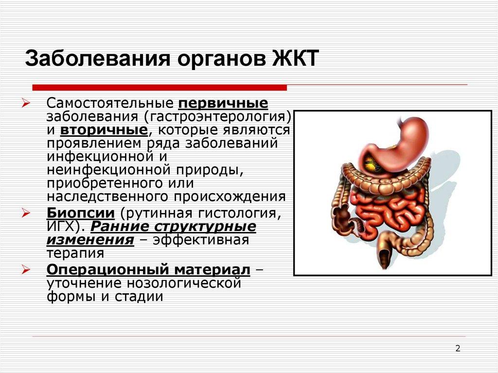 болезни желудочно кишечного тракта грыжа