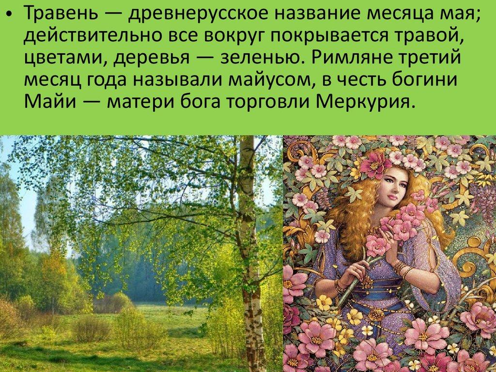 Погода на месяц в москве на август 2016 фобос