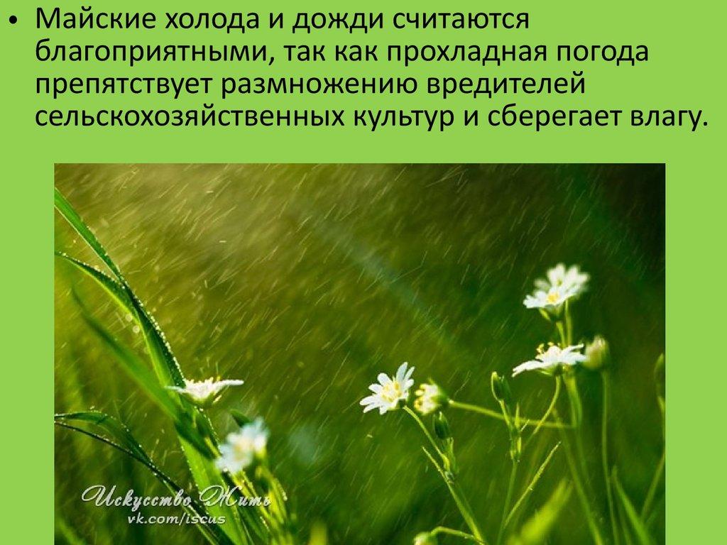 Яндекс погода в прокопьевске на месяц март 2017
