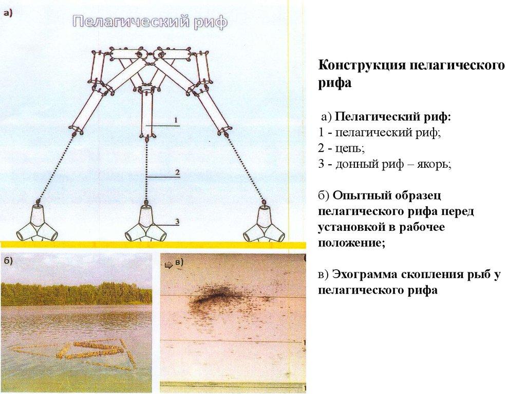 2 схема размещения гидротехнических сооружений
