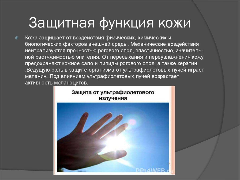 Защитная функция кожи у ребенка