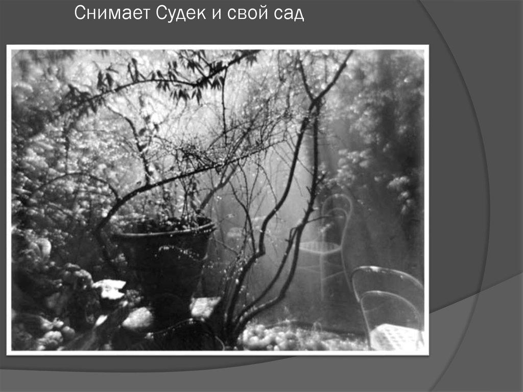 Йозеф судек фотограф и музыка
