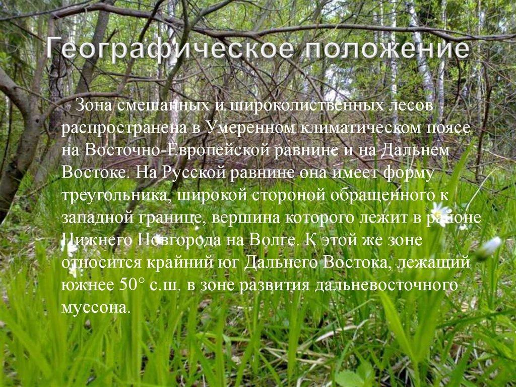 презентация на тему животное смешанного леса