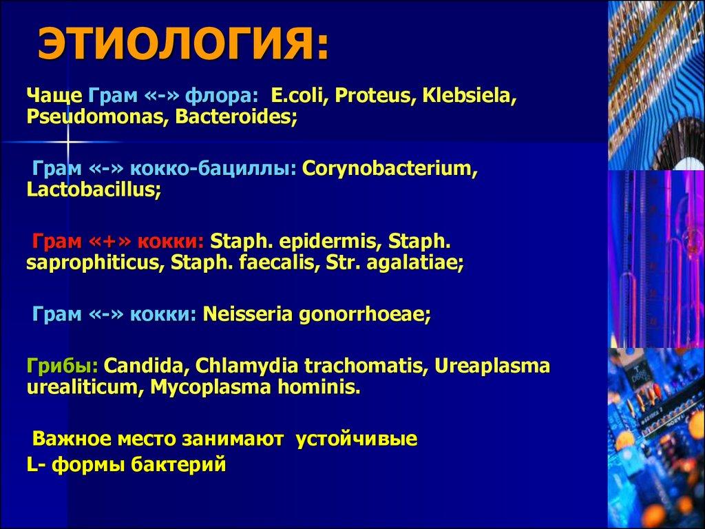 потенциальная проблема пиелонефрита