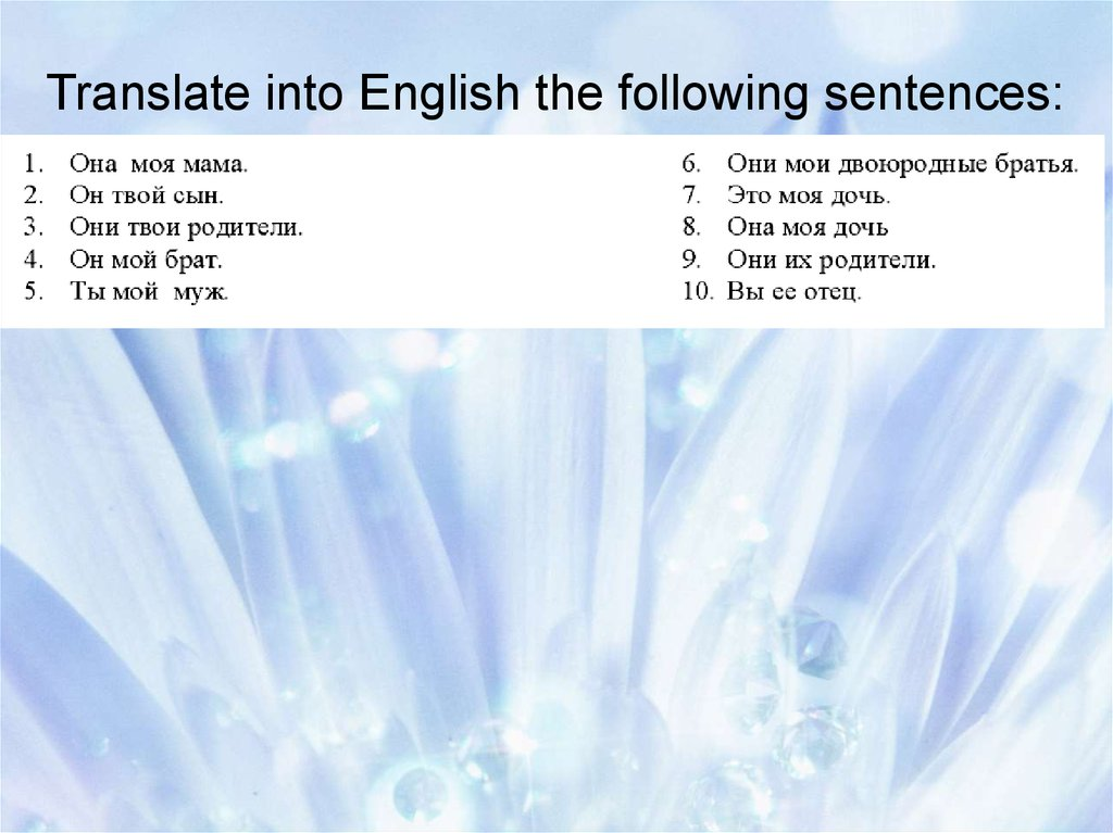 how to translate latin sentences into english