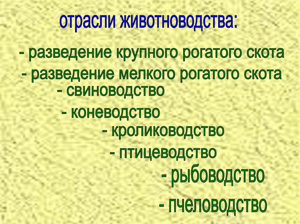 плем завод имени чапаева: