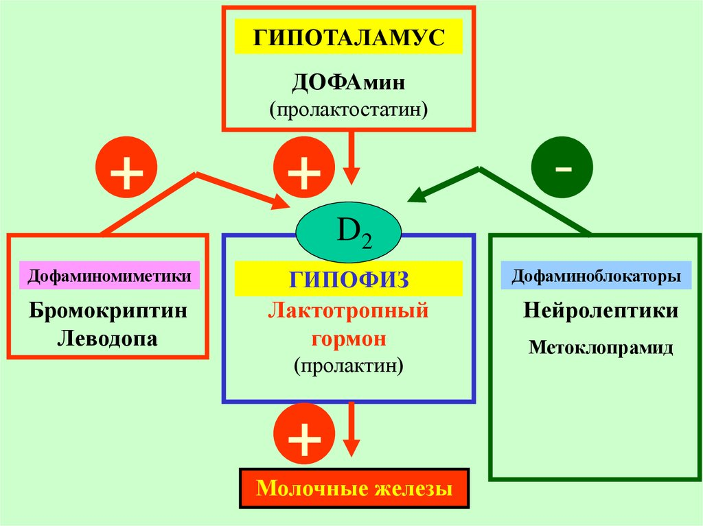 препараты гормоны эпифиза