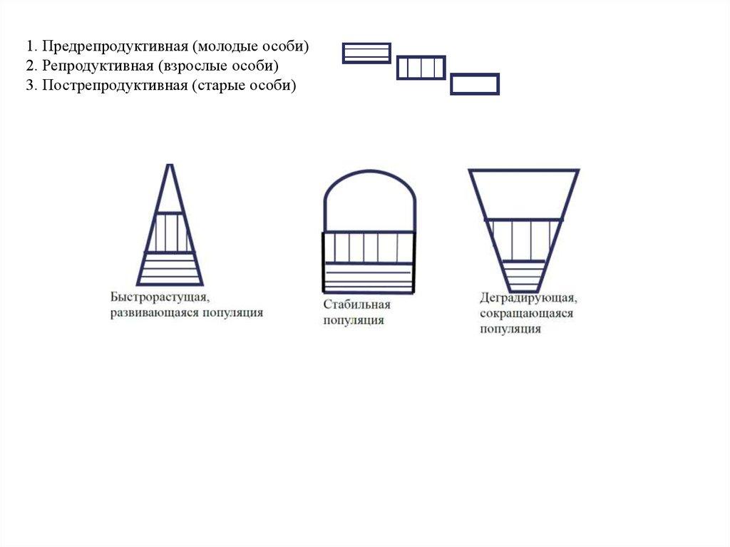 Структура и функции биосферы