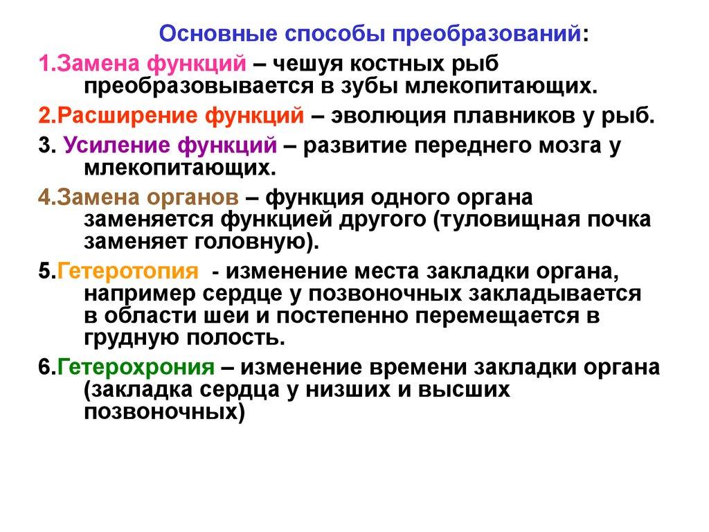 Полимастия