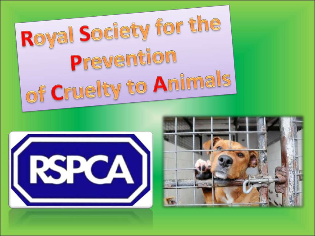 animal cruelty in modern society Humane farm animal care and you reach millions of potential customers through our humane society supporters and the extensive media coverage that certified.