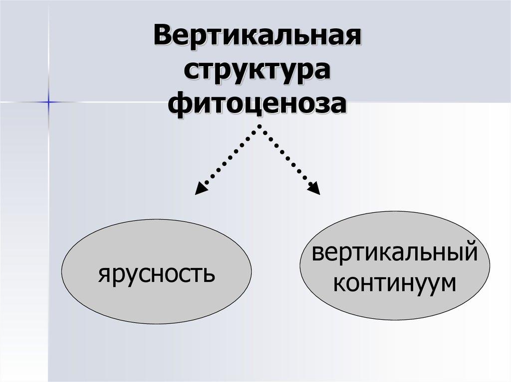 бланк для горизонтального и вертикального анализа