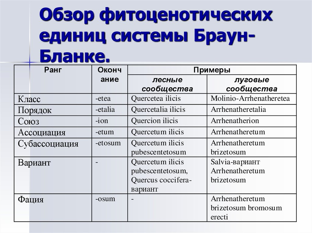 классификация браун бланке - фото 10