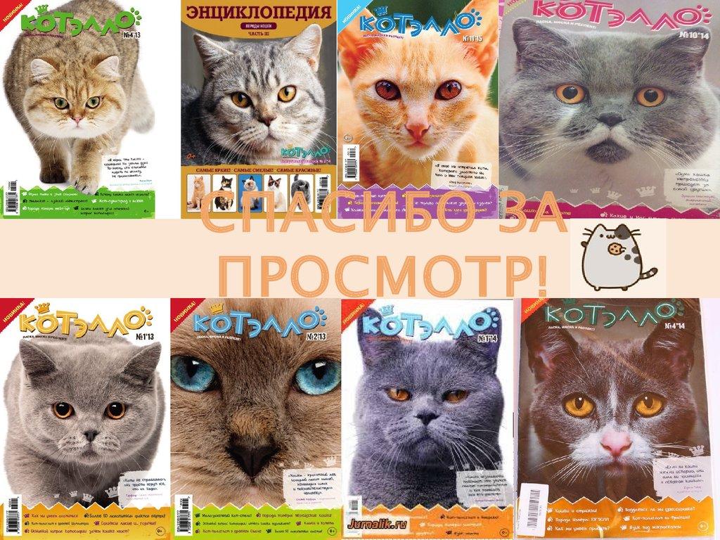 Энциклопедия пород кошек с