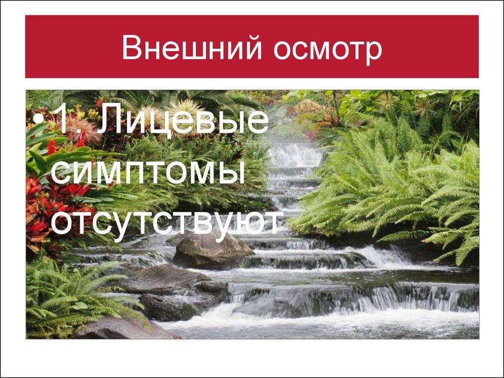 book Усі уроки української