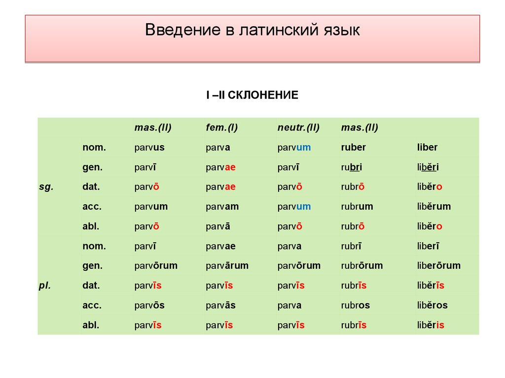 download Morphometrics 2012