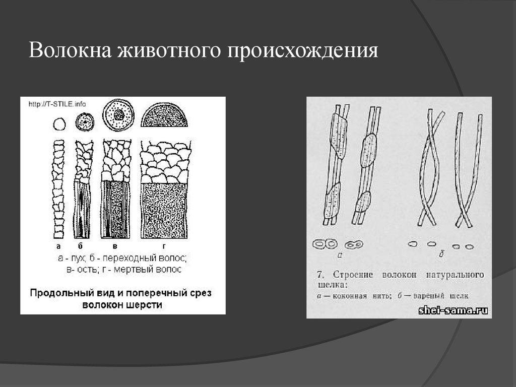 Искусственные И Синтетические Волокна Презентация