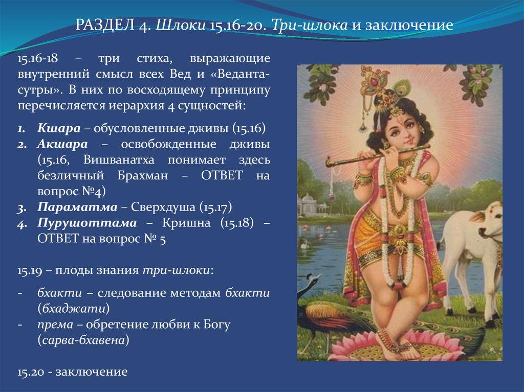 Сосать член перевод 18 фотография