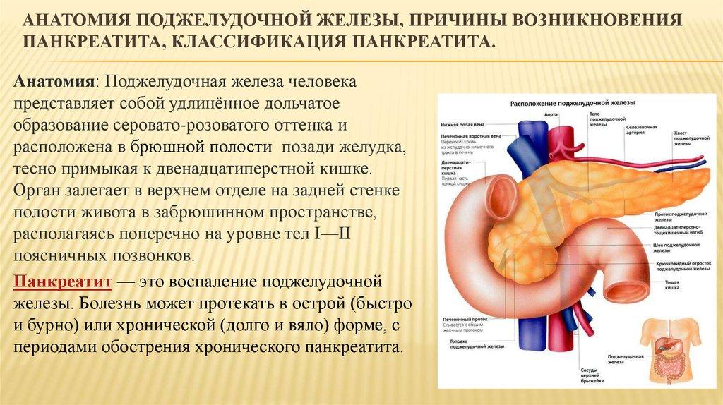 Панкреатит симптомы причины возникновения