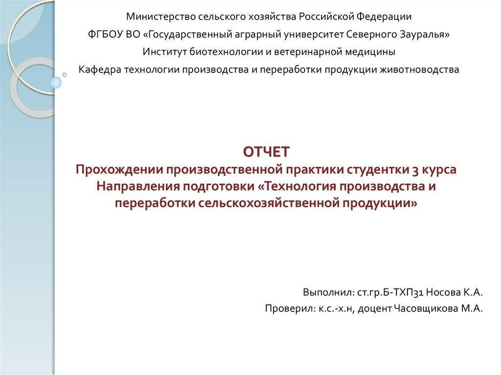 Практика в бюджетном учреждении отчет 4338