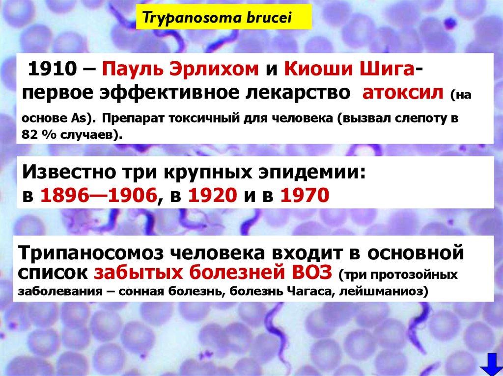 кишечные паразиты у человека диагностика