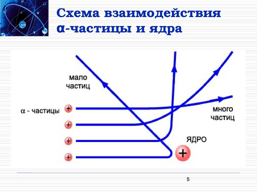 Схема строения ядра атома фото 644