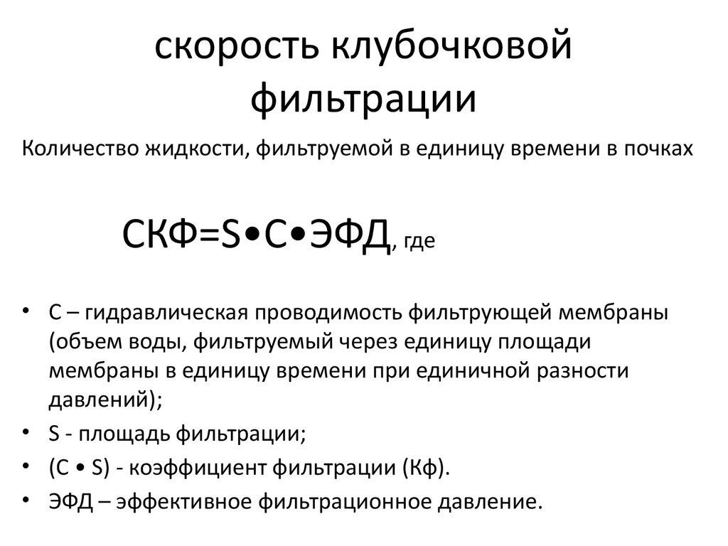 Скорость Клубочковой Фильтрации