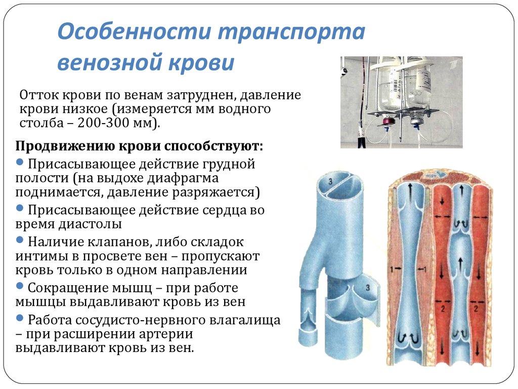 Массаж при нарушении венозного оттока