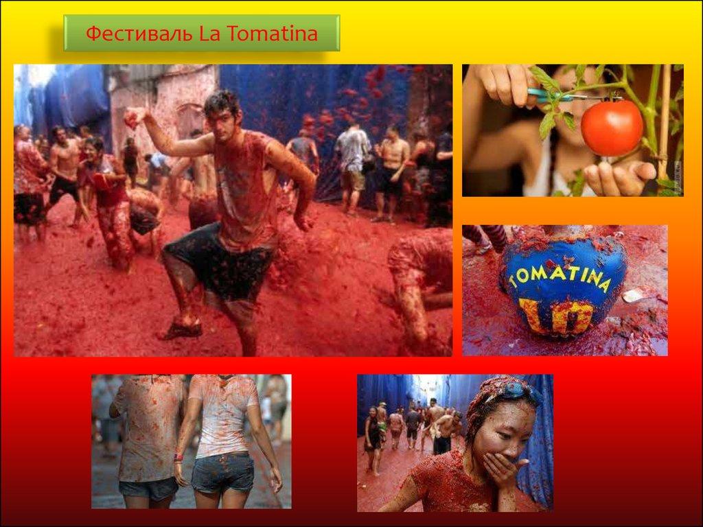 tomatina festival essay