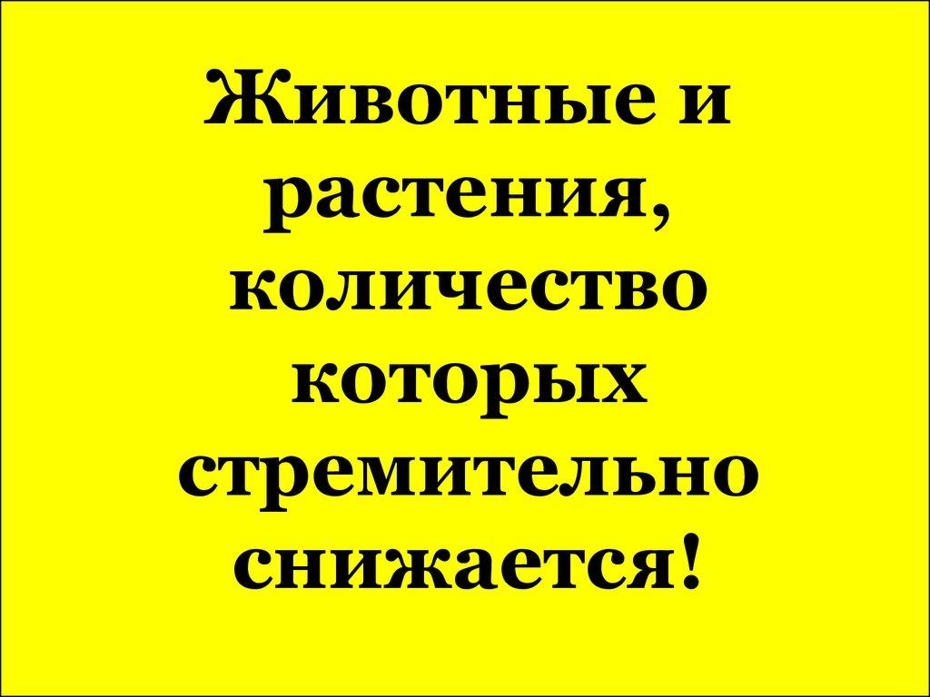 знакомство буденновск ставропольского края