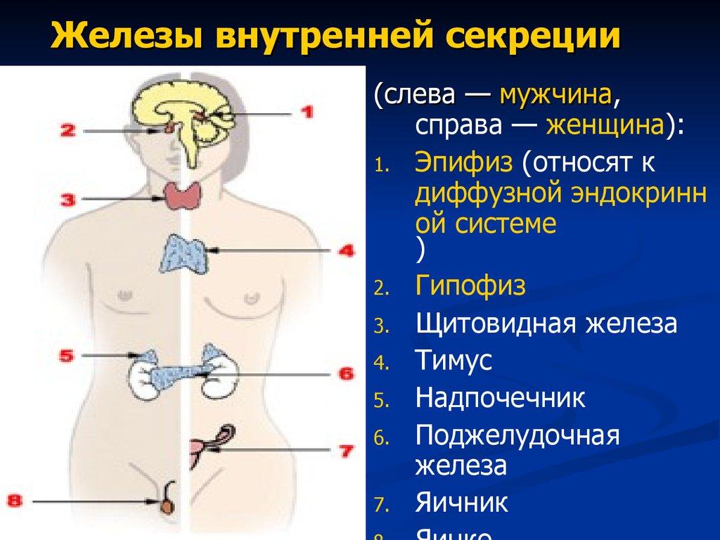 презентацию о диабете