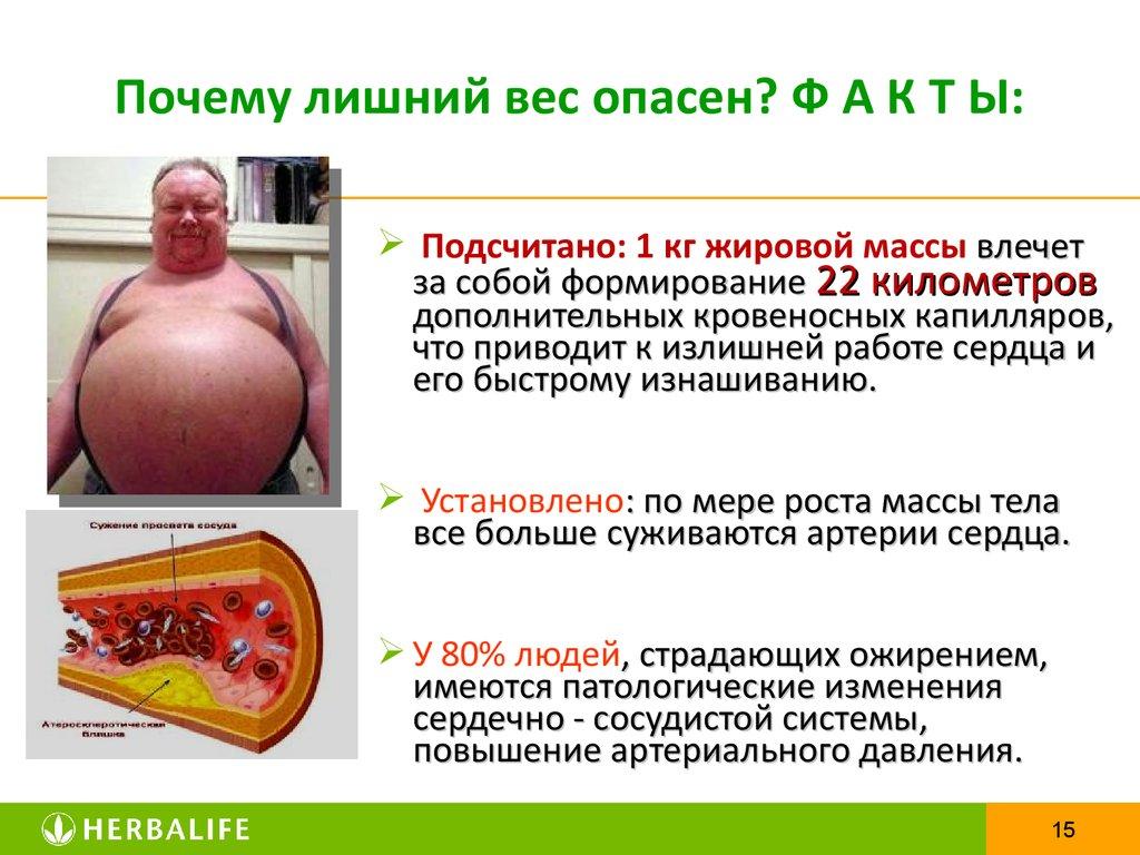 миссия здорового питания