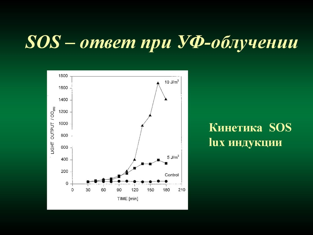 defragmentatsiya-dnk-spermatozoida