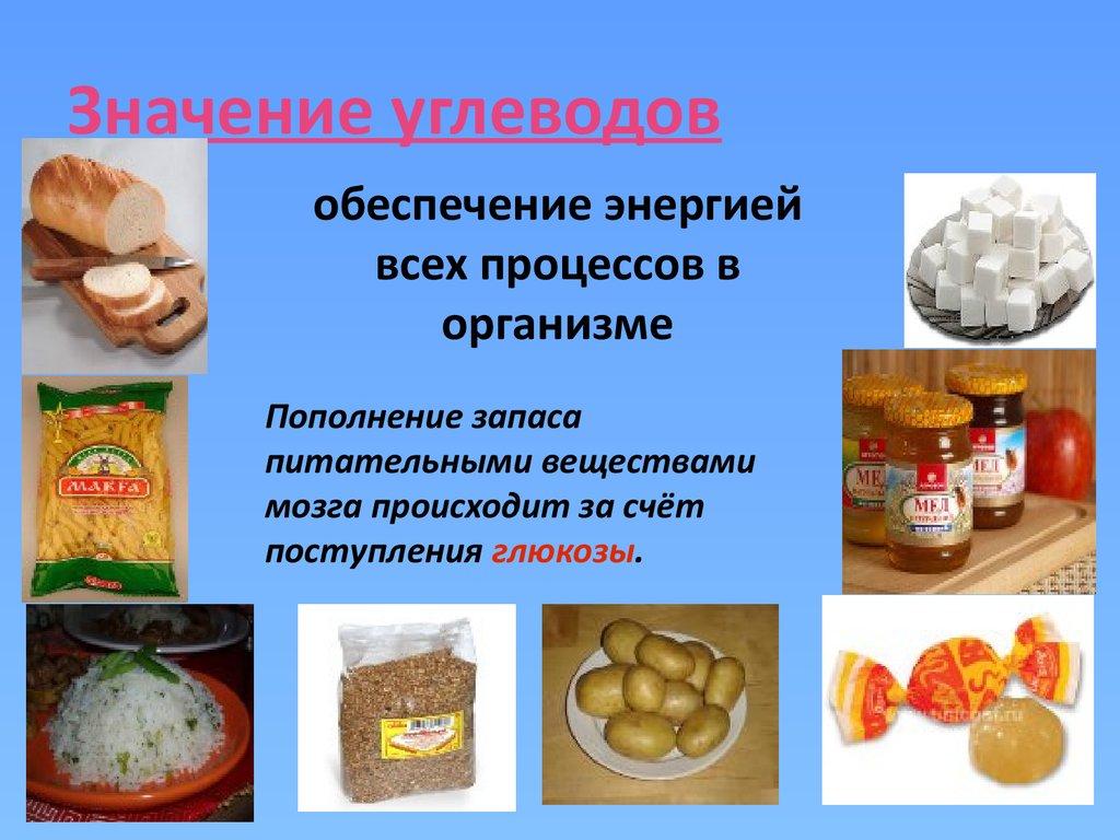 роль правильного питания в жизни человека реферат