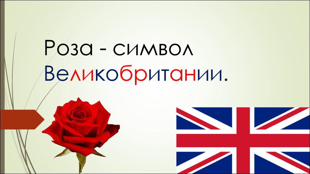 под знаком двойной розы англия при тюдорах конспект