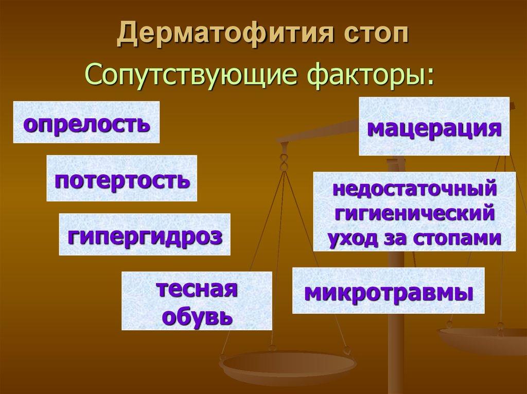 mysharedruslide894206  MySharedru  На нашем