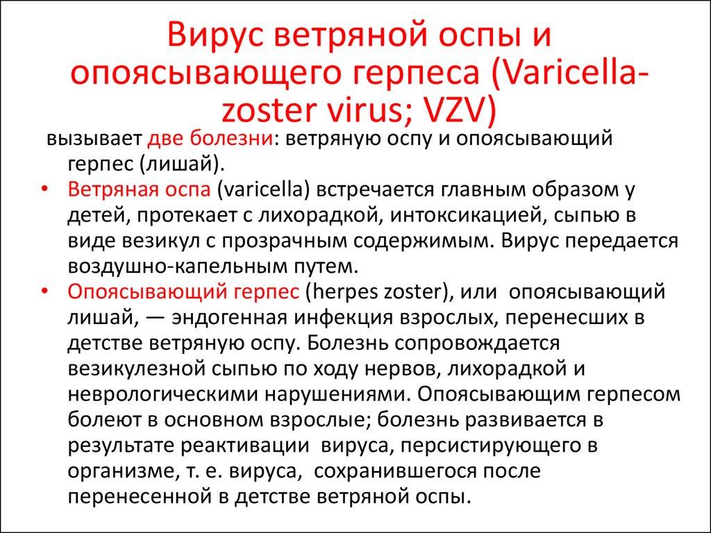 Герпесвирусы - online presentation